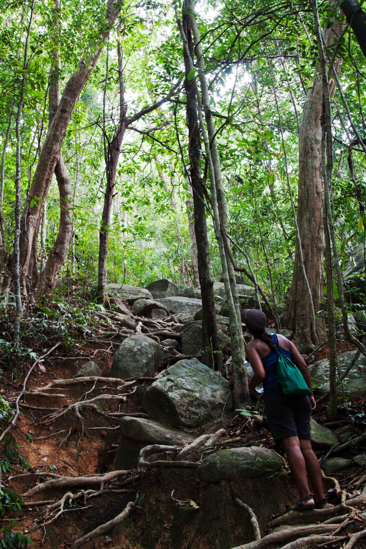 03_Jungle_Trekking_Perhentian_Island2